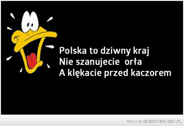 Polska to dziwny kraj –