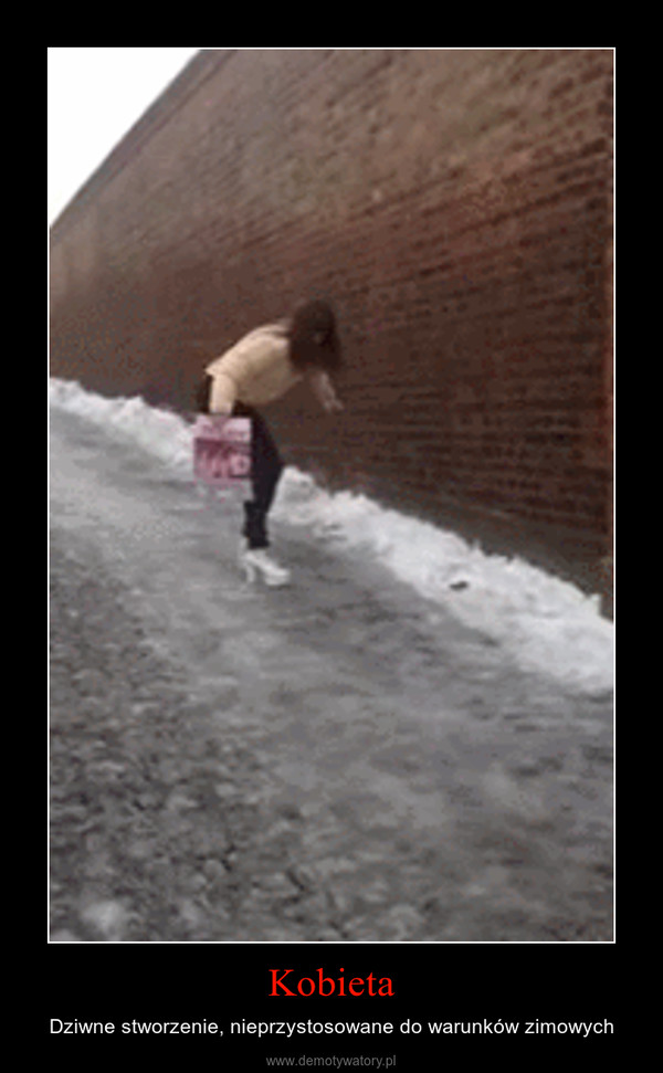 Kobieta – Dziwne stworzenie, nieprzystosowane do warunków zimowych