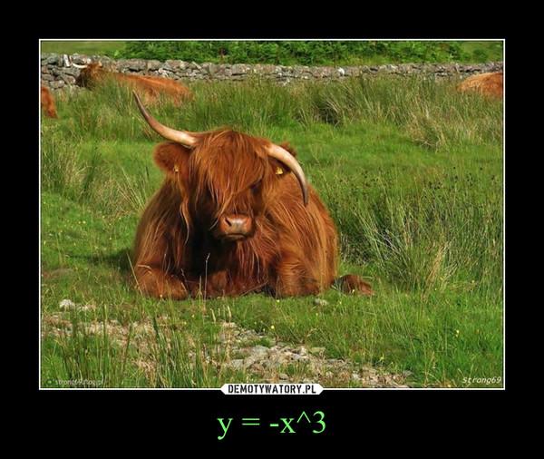 y = -x^3 –