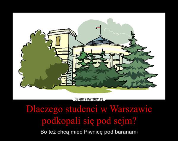 Dlaczego studenci w Warszawie podkopali się pod sejm? – Bo też chcą mieć Piwnicę pod baranami