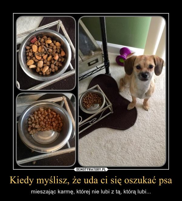 Kiedy myślisz, że uda ci się oszukać psa – mieszając karmę, której nie lubi z tą, którą lubi...