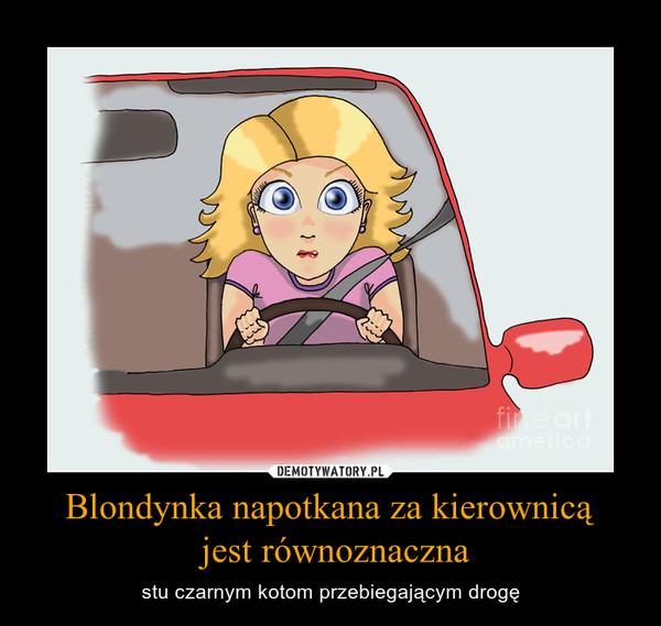 Blondynka napotkana za kierownicą jest równoznaczna – stu czarnym kotom przebiegającym drogę