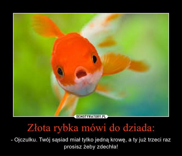 Złota rybka mówi do dziada: – - Ojczulku. Twój sąsiad miał tylko jedną krowę, a ty już trzeci raz prosisz żeby zdechła!