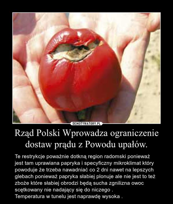 Rząd Polski Wprowadza ograniczenie dostaw prądu z Powodu upałów. – Te restrykcje poważnie dotkną region radomski ponieważ jest tam uprawiana papryka i specyficzny mikroklimat który powoduje że trzeba nawadniać co 2 dni nawet na lepszych glebach ponieważ papryka słabiej plonuje ale nie jest to też zboże które słabiej obrodzi będą sucha zgnilizna owoc scętkowany nie nadający się do niczego .Temperatura w tunelu jest naprawdę wysoka .
