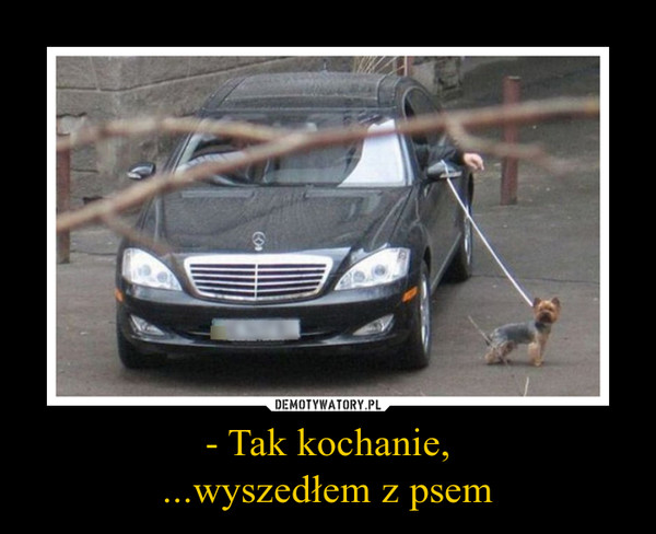 - Tak kochanie,...wyszedłem z psem –