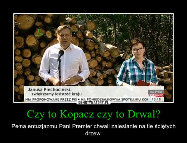 Czy to Kopacz czy to Drwal? – Pełna entuzjazmu Pani Premier chwali zalesianie na tle ściętych drzew.