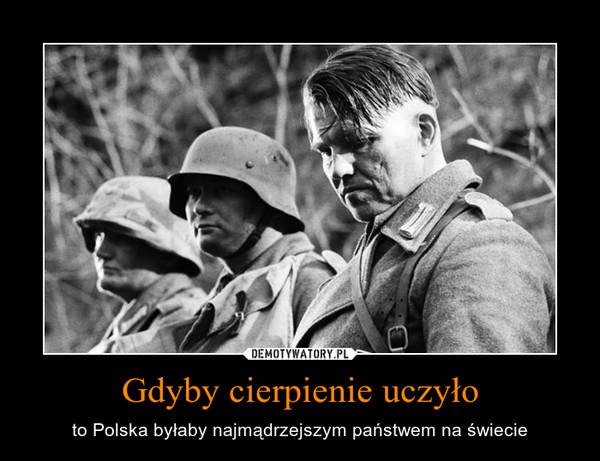 Gdyby cierpienie uczyło – to Polska byłaby najmądrzejszym państwem na świecie