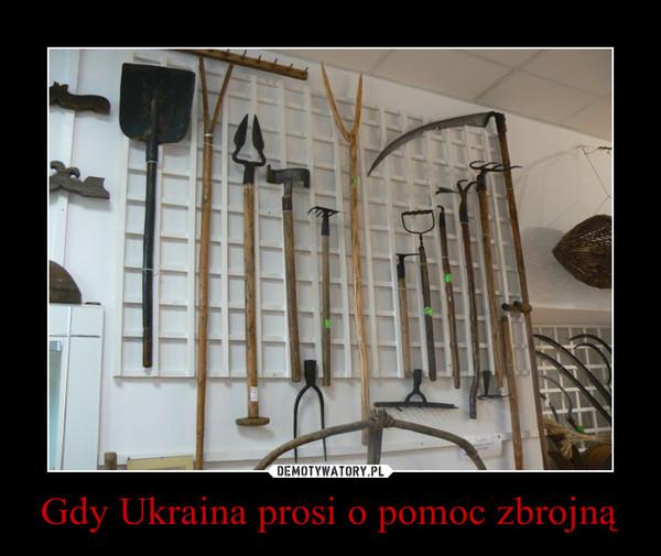 Gdy Ukraina prosi o pomoc zbrojną –