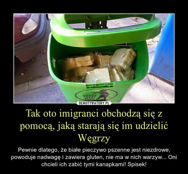 Tak oto imigranci obchodzą się z pomocą, jaką starają się im udzielić Węgrzy – Pewnie dlatego, że białe pieczywo pszenne jest niezdrowe, powoduje nadwagę i zawiera gluten, nie ma w nich warzyw... Oni chcieli ich zabić tymi kanapkami! Spisek!