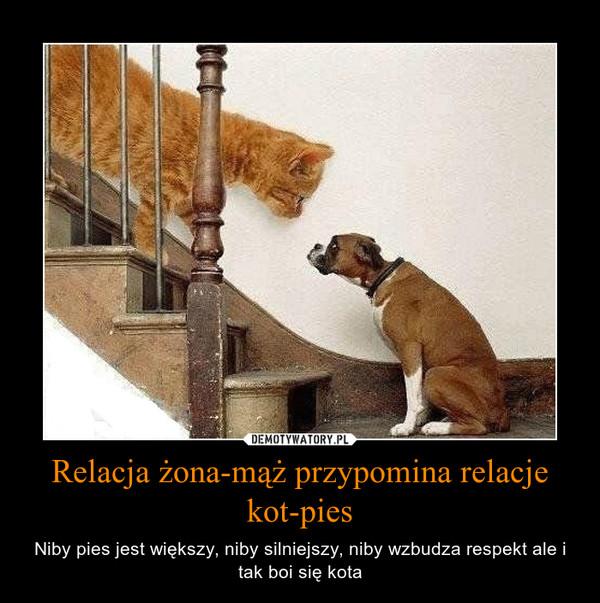 Relacja żona Mąż Przypomina Relacje Kot Pies Demotywatorypl