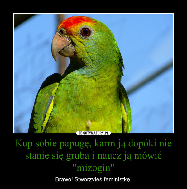 """Kup sobie papugę, karm ją dopóki nie stanie się gruba i naucz ją mówić """"mizogin"""" – Brawo! Stworzyłeś feministkę!"""