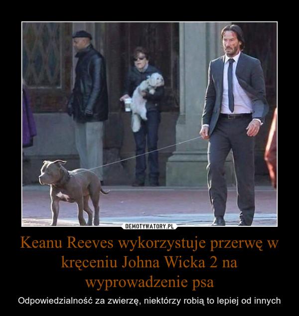 Keanu Reeves wykorzystuje przerwę w kręceniu Johna Wicka 2 na wyprowadzenie psa – Odpowiedzialność za zwierzę, niektórzy robią to lepiej od innych
