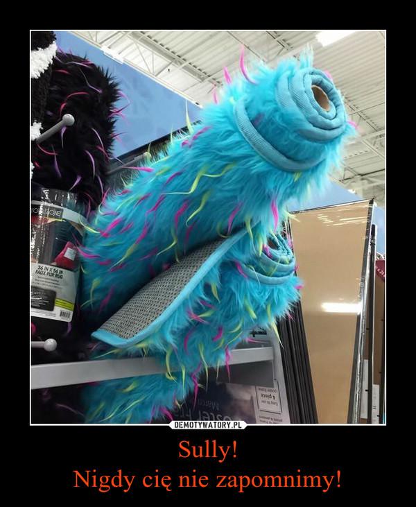 Sully!Nigdy cię nie zapomnimy! –
