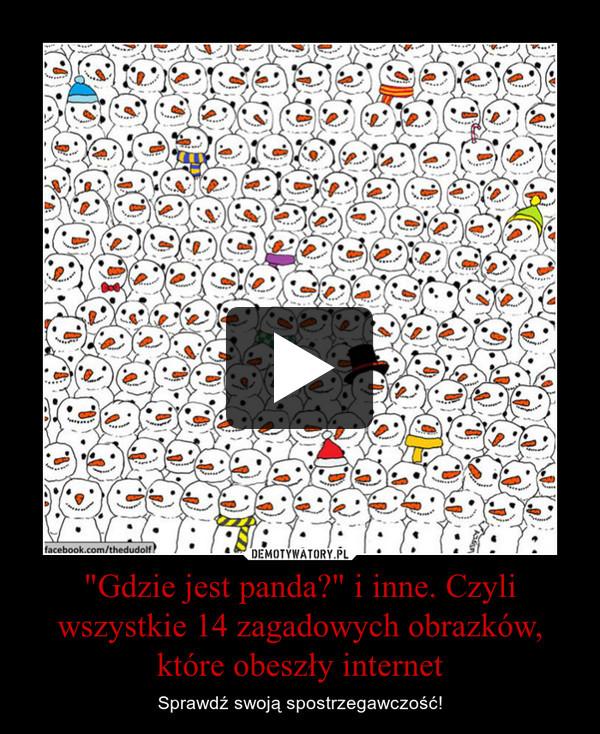 """""""Gdzie jest panda?"""" i inne. Czyli wszystkie 14 zagadowych obrazków, które obeszły internet – Sprawdź swoją spostrzegawczość!"""