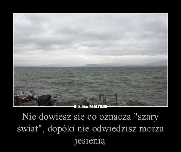 """Nie dowiesz się co oznacza """"szary świat"""", dopóki nie odwiedzisz morza jesienią –"""