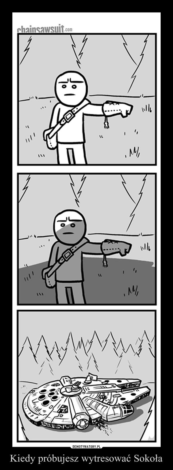 Kiedy próbujesz wytresować Sokoła –