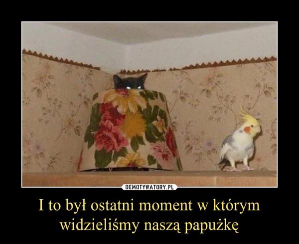 I to był ostatni moment w którym widzieliśmy naszą papużkę –