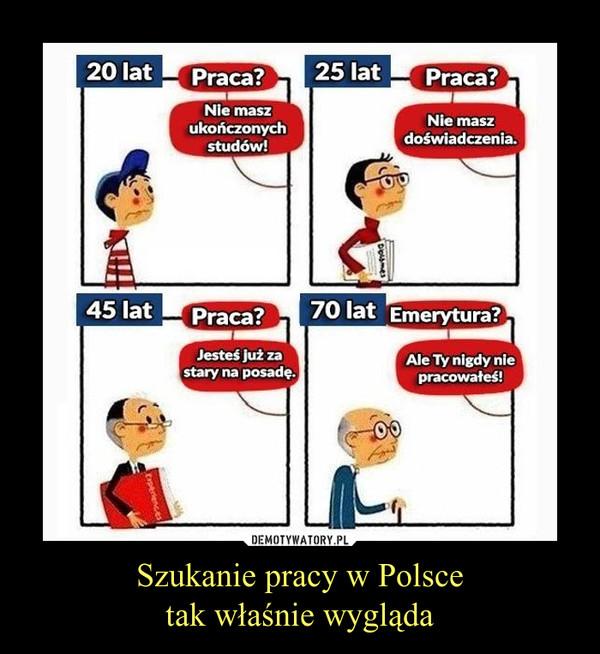 Szukanie pracy w Polscetak właśnie wygląda –