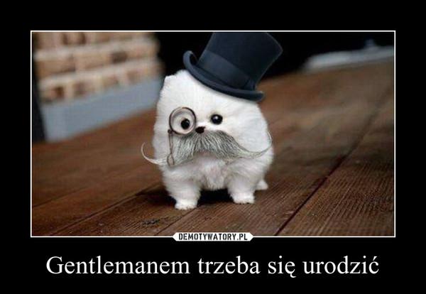 Gentlemanem trzeba się urodzić –