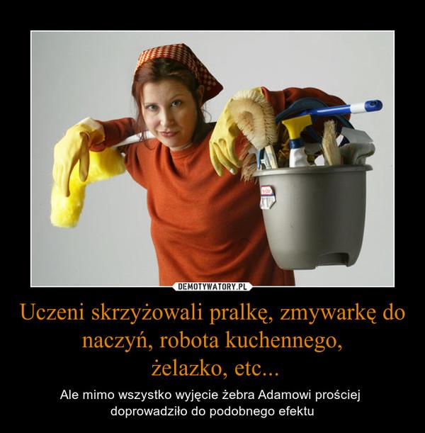 Uczeni skrzyżowali pralkę, zmywarkę do naczyń, robota kuchennego, żelazko, etc... – Ale mimo wszystko wyjęcie żebra Adamowi prościej doprowadziło do podobnego efektu
