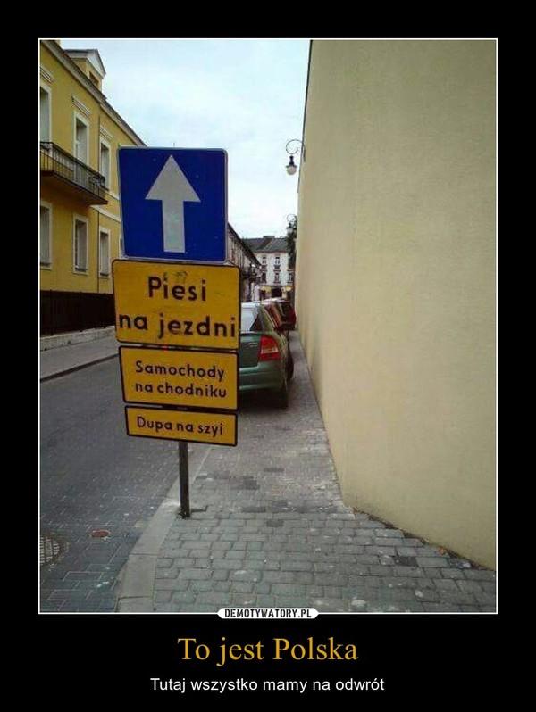 To jest Polska – Tutaj wszystko mamy na odwrót Pies na jezdniSamochody na chodnikuDupa na szyi