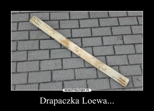 Drapaczka Loewa... –