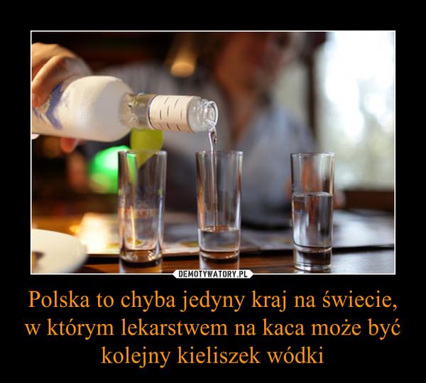 Polska to chyba jedyny kraj na świecie, w którym lekarstwem na kaca może być kolejny kieliszek wódki –