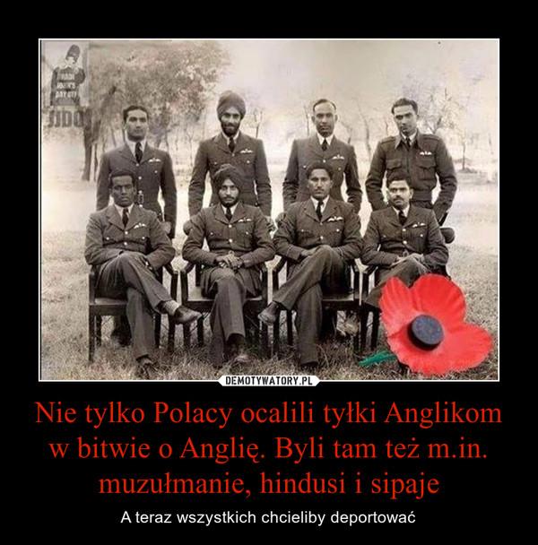 Nie tylko Polacy ocalili tyłki Anglikom w bitwie o Anglię. Byli tam też m.in. muzułmanie, hindusi i sipaje – A teraz wszystkich chcieliby deportować