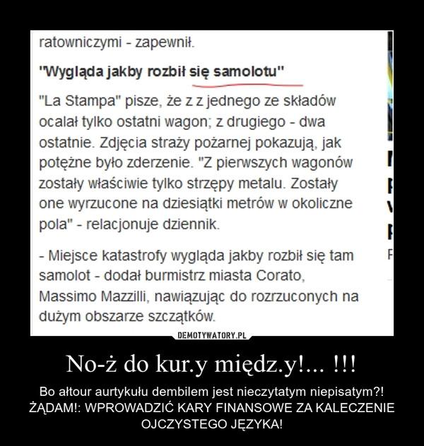 No-ż do kur.y międz.y!... !!! – Bo ałtour aurtykułu dembilem jest nieczytatym niepisatym?! ŻĄDAM!: WPROWADZIĆ KARY FINANSOWE ZA KALECZENIE OJCZYSTEGO JĘZYKA!