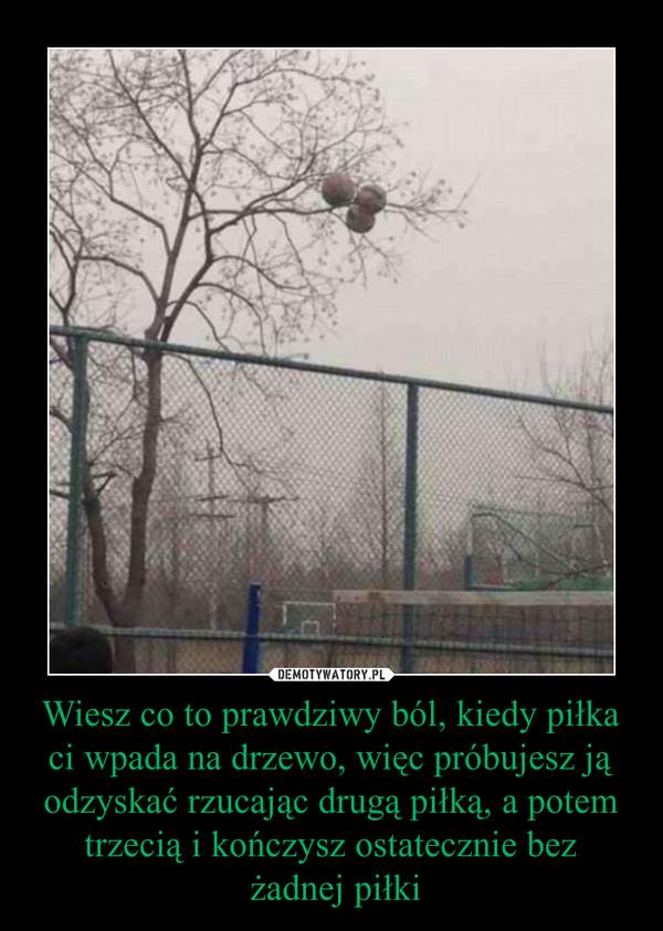 Wiesz co to prawdziwy ból, kiedy piłka ci wpada na drzewo, więc próbujesz ją odzyskać rzucając drugą piłką, a potem trzecią i kończysz ostatecznie bez żadnej piłki –