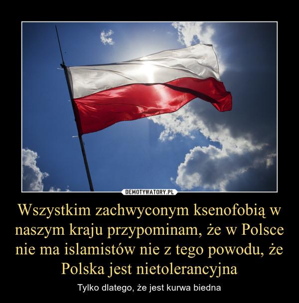 Wszystkim zachwyconym ksenofobią w naszym kraju przypominam, że w Polsce nie ma islamistów nie z tego powodu, że Polska jest nietolerancyjna – Tylko dlatego, że jest kurwa biedna