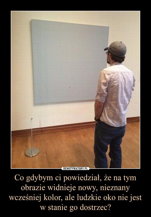 Co gdybym ci powiedział, że na tym obrazie widnieje nowy, nieznany wcześniej kolor, ale ludzkie oko nie jest w stanie go dostrzec? –