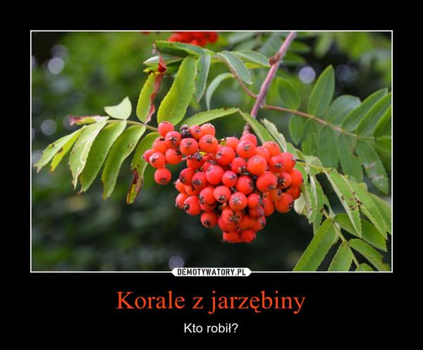 Korale z jarzębiny – Kto robił?