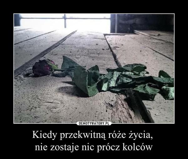 Kiedy przekwitną róże życia, nie zostaje nic prócz kolców –