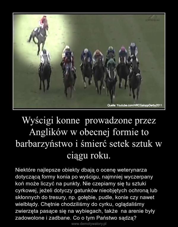 Wyścigi konne  prowadzone przez Anglików w obecnej formie to barbarzyństwo i śmierć setek sztuk w ciągu roku. – Niektóre najlepsze obiekty dbają o ocenę weterynarza dotyczącą formy konia po wyścigu, najmniej wyczerpany koń może liczyć na punkty. Nie czepiamy się tu sztuki cyrkowej, jeżeli dotyczy gatunków nieobjętych ochroną lub skłonnych do tresury, np. gołębie, pudle, konie czy nawet wielbłądy. Chętnie chodziliśmy do cyrku, oglądaliśmy zwierzęta pasące się na wybiegach, także  na arenie były zadowolone i zadbane. Co o tym Państwo sądzą?