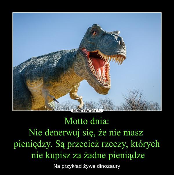 Motto dnia:Nie denerwuj się, że nie masz pieniędzy. Są przecież rzeczy, których nie kupisz za żadne pieniądze – Na przykład żywe dinozaury