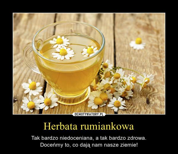 Herbata rumiankowa – Tak bardzo niedoceniana, a tak bardzo zdrowa.Doceńmy to, co dają nam nasze ziemie!