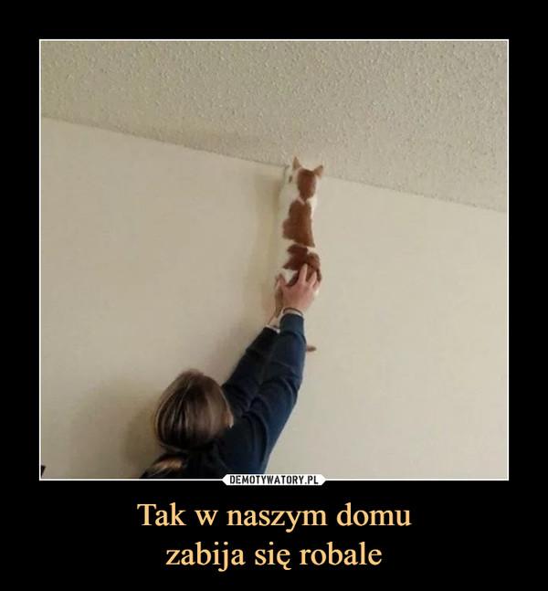 Tak w naszym domuzabija się robale –