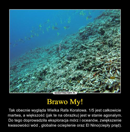 Brawo My!