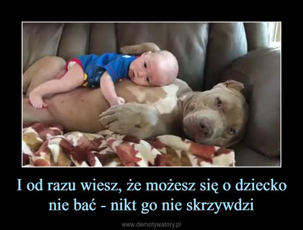 I od razu wiesz, że możesz się o dziecko nie bać - nikt go nie skrzywdzi –