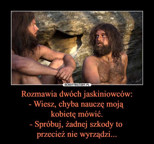 Rozmawia dwóch jaskiniowców:- Wiesz, chyba nauczę moją kobietę mówić.- Spróbuj, żadnej szkody to przecież nie wyrządzi... –