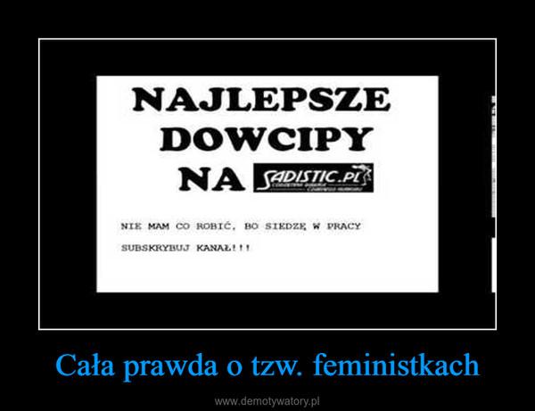 Cała prawda o tzw. feministkach –