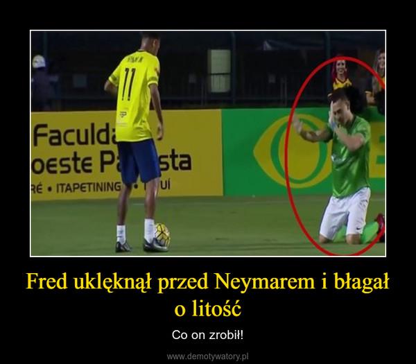 Fred uklęknął przed Neymarem i błagał o litość – Co on zrobił!