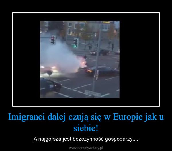 Imigranci dalej czują się w Europie jak u siebie! – A najgorsza jest bezczynność gospodarzy....
