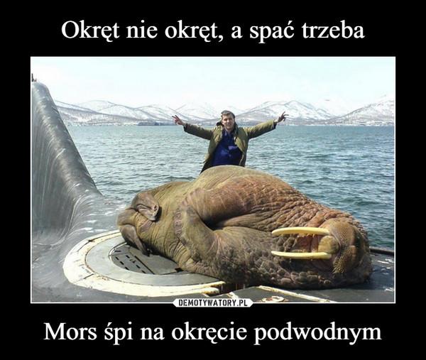 Mors śpi na okręcie podwodnym –