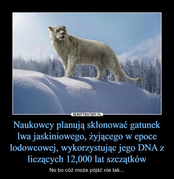 Naukowcy planują sklonować gatunek lwa jaskiniowego, żyjącego w epoce lodowcowej, wykorzystując jego DNA z liczących 12,000 lat szczątków – No bo cóż może pójść nie tak...