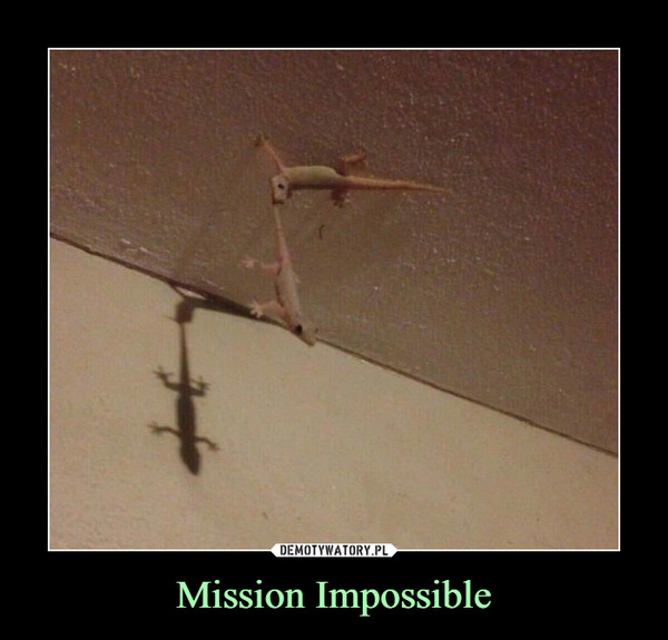 Mission Impossible –
