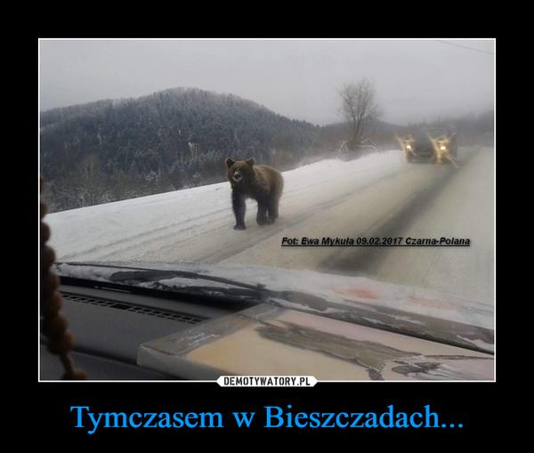 Tymczasem w Bieszczadach... –