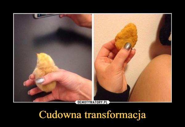 Cudowna transformacja –