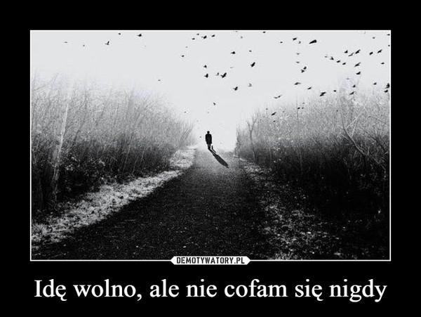 Idę wolno, ale nie cofam się nigdy –